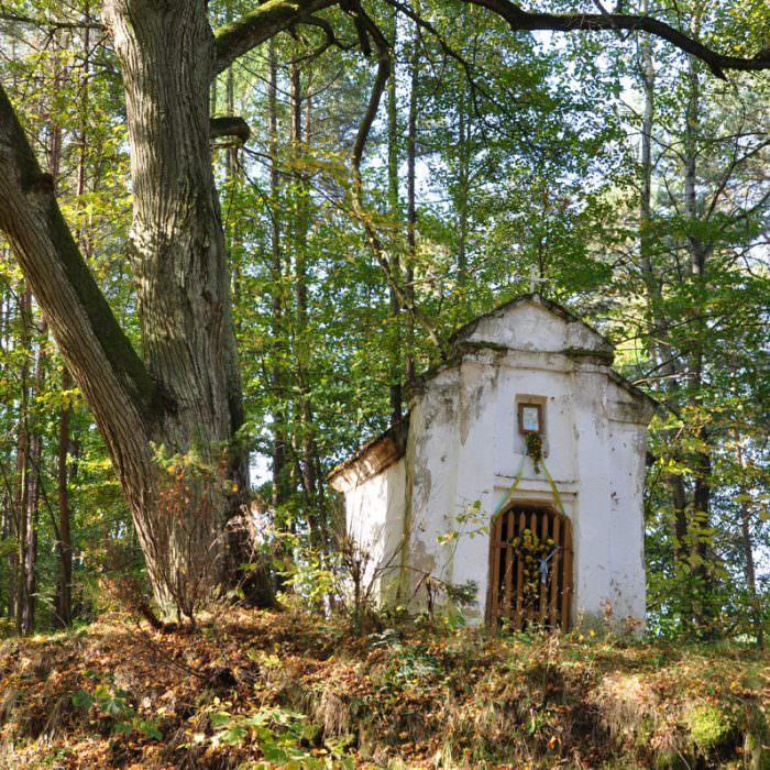 Leśna kapliczka domkowa