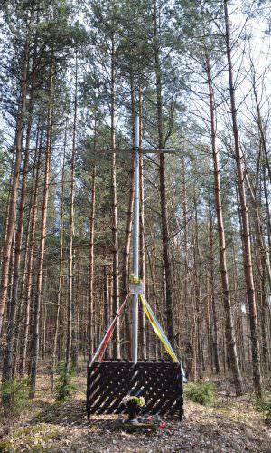 Krzyż wCiebłowicach Dużych