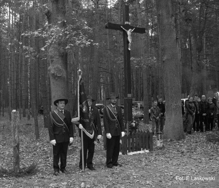 Krzyż wlesie koło Wioski